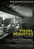 Film Visual Acoustics.