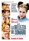La bellezza del somaro film from Sergio Castellitto filmography.