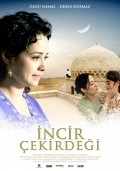Incir cekirdegi is the best movie in Ozgu Namal filmography.