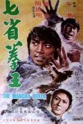 Qi sheng quan wang - movie with Sammo Hung.