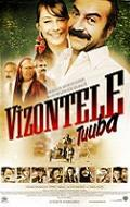 Vizontele Tuuba is the best movie in Demet Akbag filmography.
