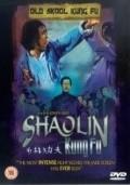 Shao Lin zhen gong fu is the best movie in Jet Li filmography.