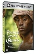 Prince Among Slaves - movie with Yasiin Bey.