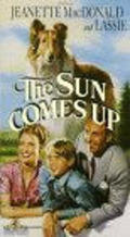 The Sun Comes Up - movie with Lloyd Nolan.