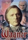Wagner is the best movie in Laszlo Galffi filmography.