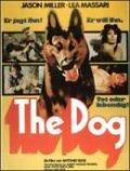 Film El Perro.