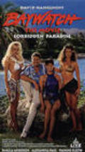 Baywatch: Forbidden Paradise - movie with Pamela Anderson.