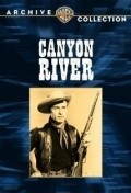 Canyon River - movie with Walter Sande.