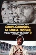 Campa carogna... la taglia cresce is the best movie in Teresa Gimpera filmography.