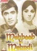 Mehboob Ki Mehndi is the best movie in Pradeep Kumar filmography.