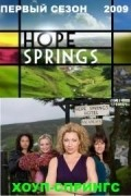 Hope Springs is the best movie in Vinette Robinson filmography.