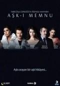 Ask-i memnu is the best movie in Nur Aysan filmography.