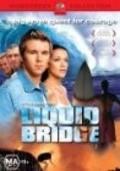 Liquid Bridge is the best movie in Carmen Duncan filmography.
