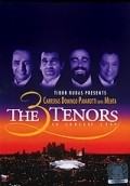 The 3 Tenors in Concert 1994 - movie with Placido Domingo.