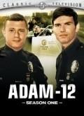 Adam-12  (serial 1968-1975) is the best movie in Martin Milner filmography.