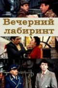 Vecherniy labirint is the best movie in Georgi Svetlani filmography.