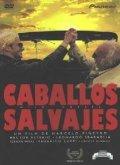 Caballos salvajes is the best movie in Leonardo Sbaraglia filmography.
