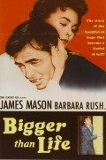 Bigger Than Life film from Nicholas Ray filmography.