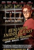 Benjamin Sniddlegrass and the Cauldron of Penguins - movie with Stephen Fry.