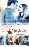 Under the Mistletoe is the best movie in Jaime Ray Newman filmography.