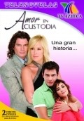 Amor en custodia film from Daniel Aguirre filmography.