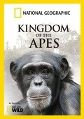 Wild Kingdom Of The Apes