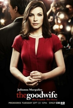 The Good Wife film from Michael Zinberg filmography.