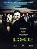 CSI: Crime Scene Investigation is the best movie in William Petersen filmography.