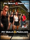 Pit Bulls and Parolees - movie with Danny Trejo.