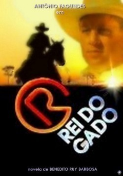 O Rei do Gado is the best movie in Patricia Pillar filmography.