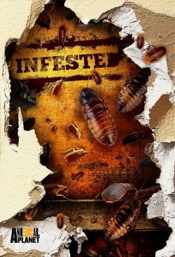 Infested! is the best movie in Sintiya Krofut filmography.