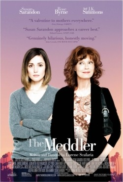 The Meddler is the best movie in Casey Wilson filmography.