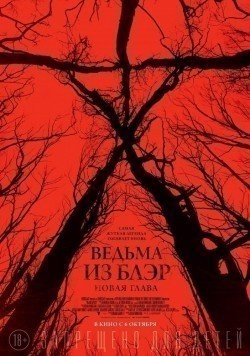 Blair Witch is the best movie in Valorie Curry filmography.