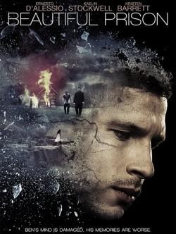 Beautiful Prison is the best movie in Liam Matthews filmography.