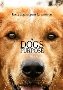 A Dog's Purpose film from Lasse Hallstrom filmography.