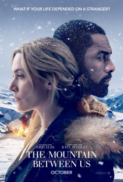 The Mountain Between Us - movie with Idris Elba.