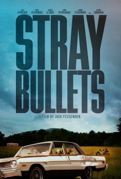 Stray Bullets is the best movie in Robert Burke Warren filmography.