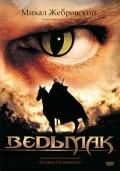 Wiedzmin is the best movie in Michal Zebrowski filmography.