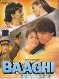 Baaghi: A Rebel for Love - movie with Shakti Kapoor.