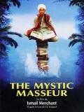 The Mystic Masseur is the best movie in Sakina Jaffrey filmography.