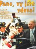 Pane, vy jste vdova! is the best movie in Vladimir Mensik filmography.