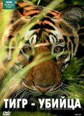 Film BBC: Natural World - Tiger Kill.