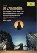 Die Zauberflote is the best movie in Lucia Popp filmography.