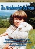 Za trnkovym kerem is the best movie in Ladislav Frej filmography.