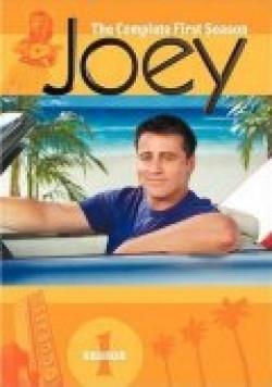 TV series Joey.