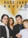 Du&#353-e jako kaviar is the best movie in Vilma Cibulkova filmography.