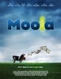 Moola is the best movie in Shailene Woodley filmography.